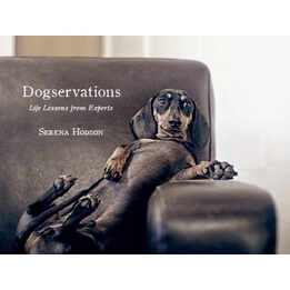 Dogservations Book