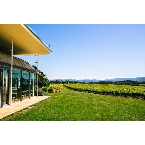 Yarra Valley Winery Tour from Melbourne with Gourmet Vineyard Lunch