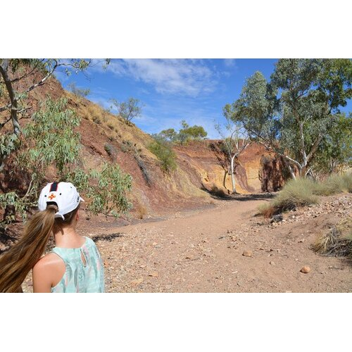 West MacDonnell Ranges Small-Group Full-Day Guided Tour