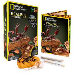 National Geographic Real Bug Dig Kit