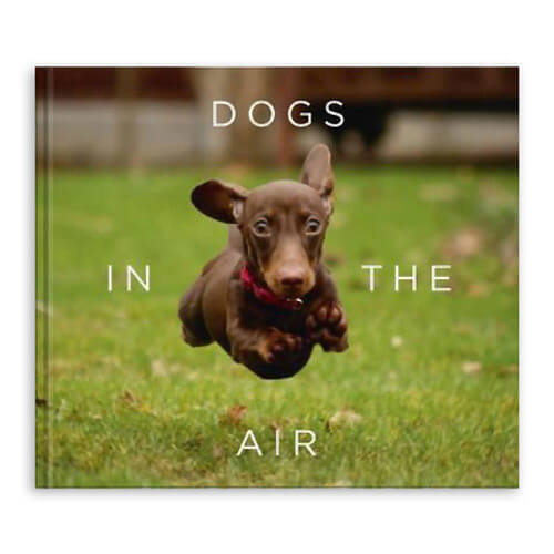 Dogs In The Air Book